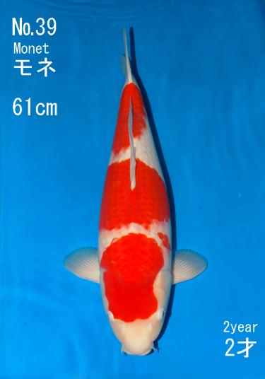 Sakai FF April Auction (39)