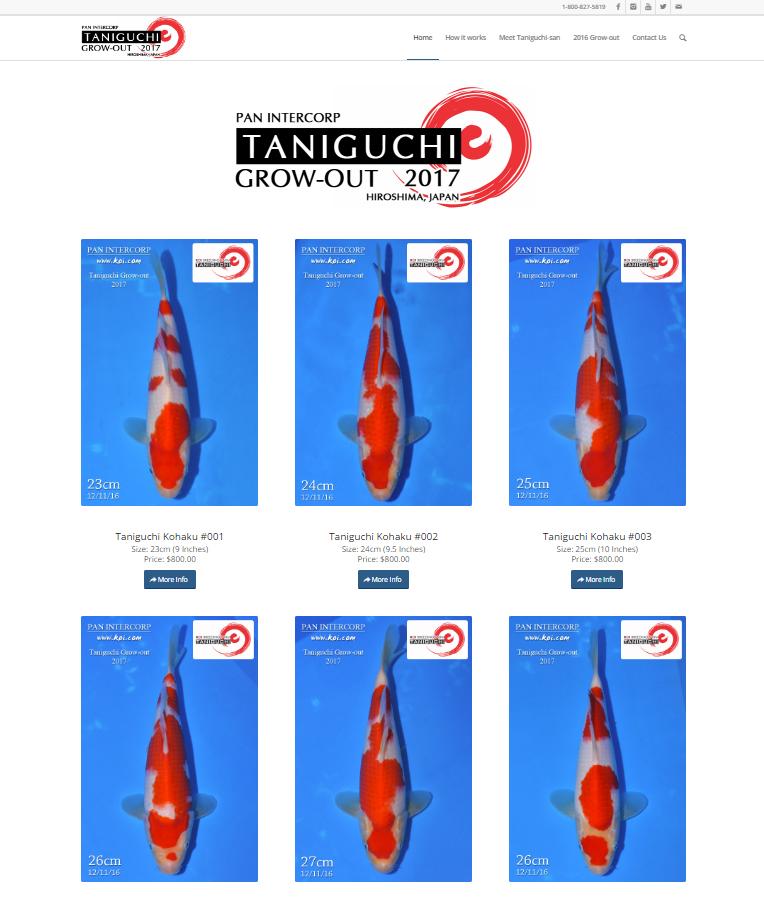 Taniguchi Grow-out 2017