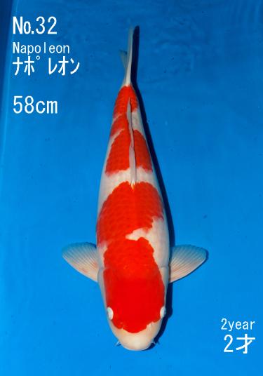 Sakai FF April Auction (32)