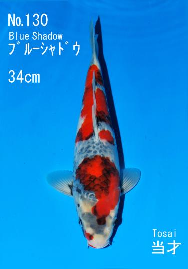 Sakai FF April Auction (130)