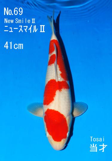Sakai FF April Auction (69)