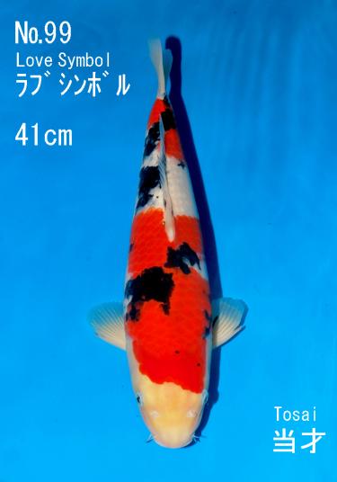 Sakai FF April Auction (99)